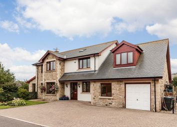 Thumbnail 5 bedroom detached house for sale in Springfield, Longhoughton, Alnwick