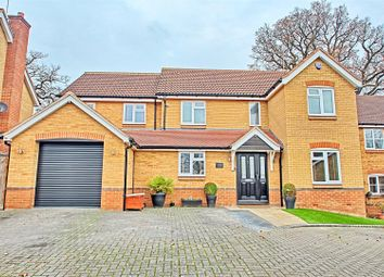Thumbnail 5 bed detached house for sale in Gosse Close, Hoddesdon