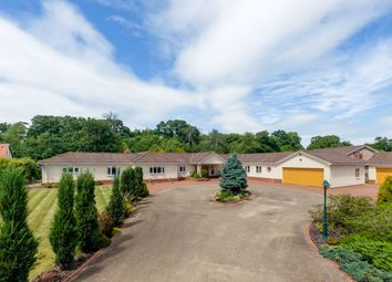 Thumbnail 5 bed detached bungalow for sale in Hatchet Lane, Stonely, St. Neots