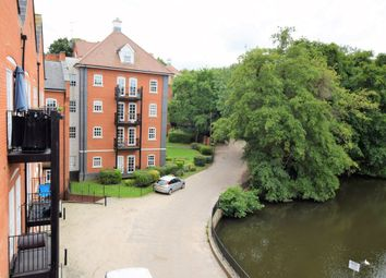 Thumbnail Studio to rent in Albany Gardens, Colchester