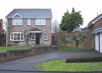 Thumbnail 4 bed detached house to rent in Sassoon Walk, Marlborough