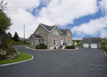 Thumbnail 4 bed detached house for sale in Begny Road, Dromara, Down