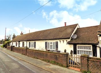 Thumbnail 3 bed bungalow to rent in Amberstone Cottages, Amberstone, Hailsham, East Sussex
