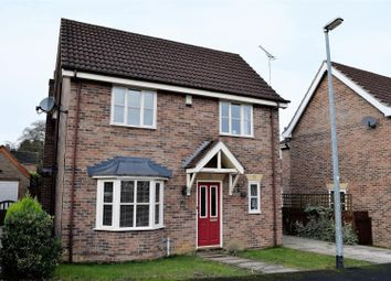 Thumbnail 4 bed detached house to rent in Staniwells Drive, Broughton, Brigg