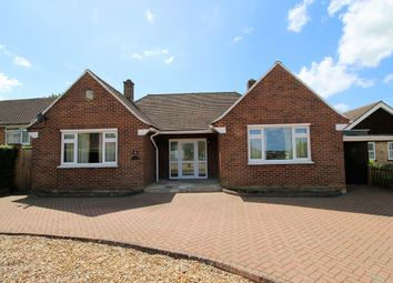 Thumbnail 3 bed detached bungalow to rent in Lion Close, Overton, Basingstoke