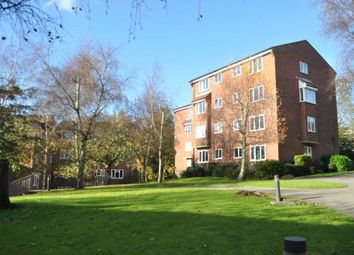 Thumbnail Studio to rent in St. Leonards Park, East Grinstead