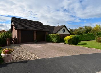Thumbnail 4 bed detached house for sale in St Augustine Drive, Droitwich