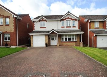Thumbnail 4 bedroom detached house to rent in Wallace Wynd, Cambuslang