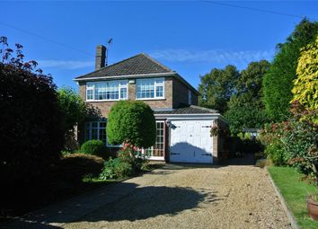 Thumbnail 4 bed detached house for sale in 4 Doctors Lane, Rippingale, Lincolnshire