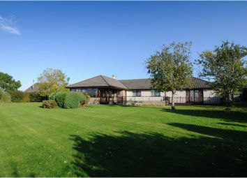 Thumbnail 4 bed detached bungalow for sale in Nigg, Tain