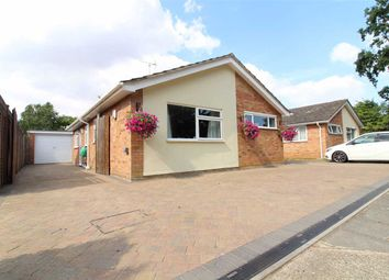 Thumbnail 4 bed detached bungalow for sale in West Lawn, Ipswich