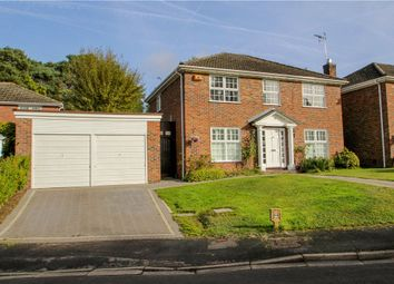 Thumbnail 4 bed detached house for sale in Bellever Hill, Camberley, Surrey