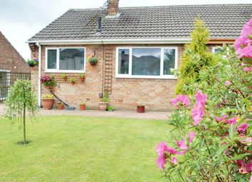 Thumbnail 3 bed semi-detached bungalow for sale in Knox Avenue, Harrogate