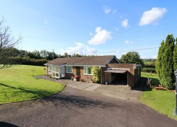 Thumbnail 3 bed detached bungalow for sale in Creuddyn Bridge, Lampeter, Ceredigion