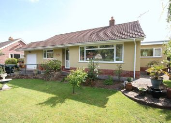 Thumbnail 2 bed detached bungalow for sale in Doniford Road, Williton, Taunton