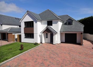 Thumbnail 4 bed detached house for sale in Brixton, Plymouth