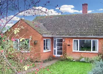 Thumbnail 3 bed semi-detached house to rent in Smallhythe Road, Tenterden