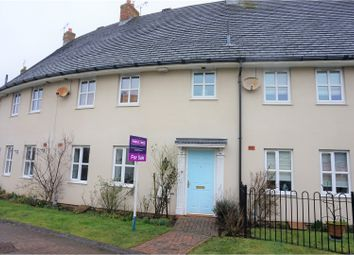 Thumbnail 3 bed terraced house for sale in Shepherds Well, Brough