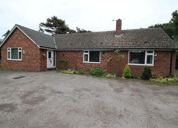 Thumbnail 4 bed detached bungalow for sale in Low Harker, Carlisle, Cumbria