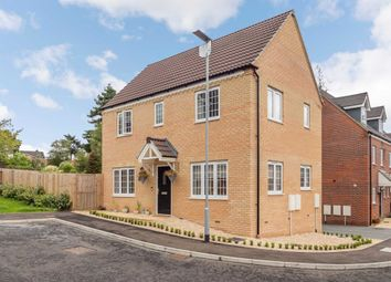 Thumbnail 3 bed detached house for sale in Willow Close, Brundall, Norwich