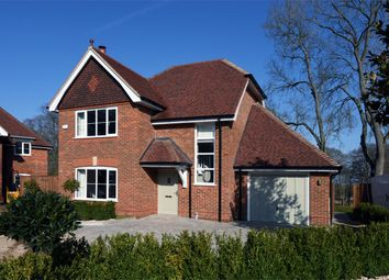 Thumbnail 3 bed detached house for sale in Winchfield View, Old Potbridge Road, Winchfield