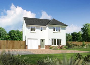 "Thumbnail 4 bed detached house for sale in ""Dukeswood"" at Drum Farm Lane, Bo'ness"