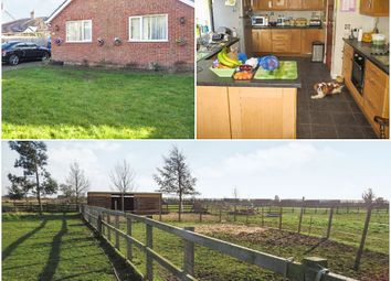 Thumbnail 3 bed detached bungalow for sale in Church Lane, Moulton, Spalding