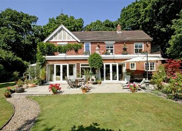 Thumbnail 5 bed detached house for sale in Hightown Hill, Ringwood, Hampshire