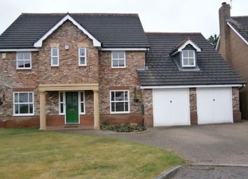 Thumbnail 4 bed detached house to rent in 19 Buttermere Dr, Gt Warf