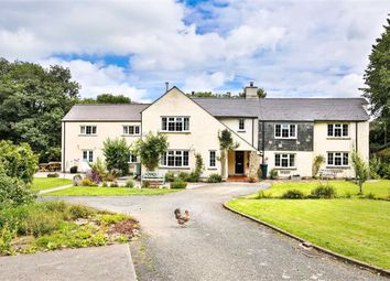 Thumbnail 4 bed detached house for sale in St. Giles-On-The-Heath, Launceston