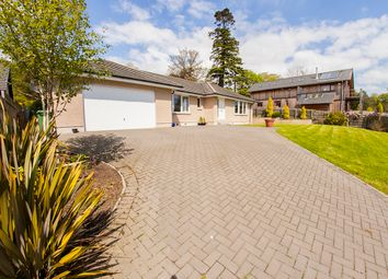 4 bed detached bungalow for sale in Rosemount Road, Montrose DD10
