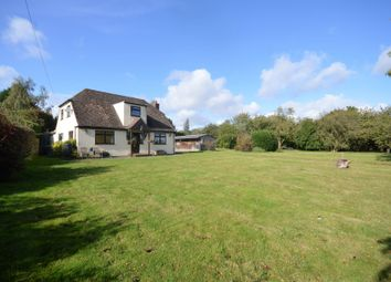 Thumbnail 4 bed detached house for sale in Cherry Tree House, Nr Hare Street, Buntingford