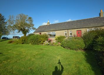 Thumbnail 3 bed detached house to rent in West Mains Of Rossie, Montrose, Angus