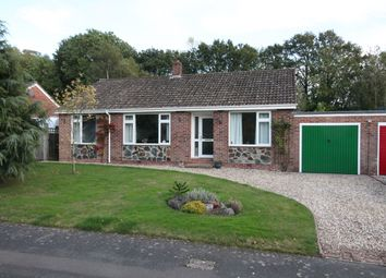 Thumbnail 3 bed detached bungalow for sale in Briants Piece, Hermitage, Thatcham