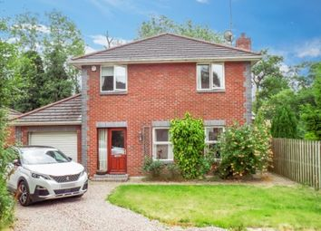 Thumbnail 3 bed detached house to rent in Rose Meadows, Ballinderry Upper, Lisburn