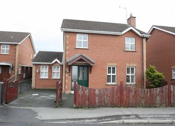 Thumbnail 4 bed detached house for sale in Cumber Park, Drumaness, Down