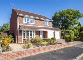 Thumbnail 4 bed detached house for sale in Apple Way, Old Basing, Basingstoke