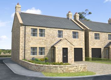Thumbnail 4 bed detached house for sale in Skyline, Gloster Hill Farm, Amble Northumberland