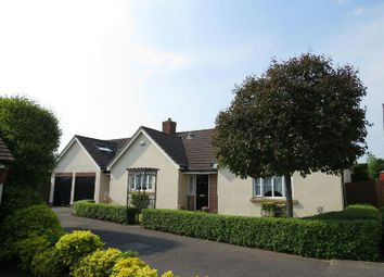 Thumbnail 3 bed detached bungalow for sale in Observatory Field, Winscombe