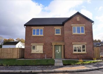 Thumbnail 4 bed detached house for sale in Llys Tirnant, Fforestfach, Tycroes, Ammanford