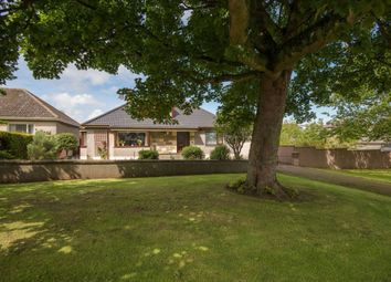 Thumbnail 4 bed detached bungalow for sale in 2 Lady Jane Road, North Berwick