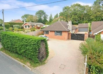 Thumbnail 4 bed bungalow for sale in Whitehill, Hampshire