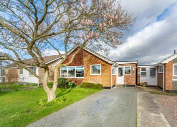 Thumbnail 3 bed detached bungalow for sale in Spinney Walk, Barnham, West Sussex