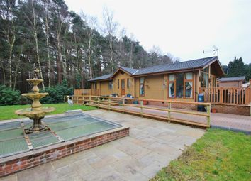 Thumbnail 3 bed property for sale in Avon Forest Lodges, Hurn Road, Ringwood