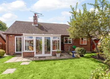 Thumbnail 3 bedroom bungalow for sale in Salisbury Close, Odiham, Hook, Hampshire