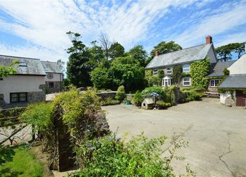 Thumbnail 4 bed farmhouse for sale in Bradworthy, Holsworthy
