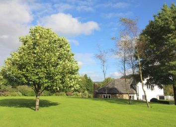 Thumbnail 4 bed property for sale in Quoditch, Ashwater, Beaworthy