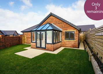 Thumbnail 2 bed detached bungalow for sale in The Dunes, Seascale