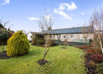 Thumbnail 4 bed bungalow for sale in Holland Bush, Hightae, Lockerbie