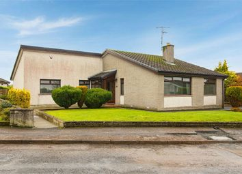 Thumbnail 4 bed detached bungalow for sale in Collinwood, Ballymena, County Antrim